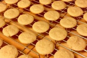 Failed macarons
